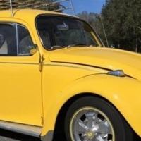 VW bobbel/beetle