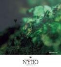 Nybo workwear